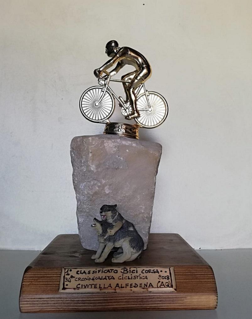 Cronoscalata Ciclistica